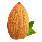 Almond, Nuts Nutrition, Badam