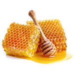 Honey, Honey Property, Honey Nutrition