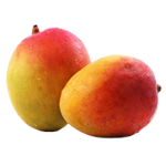 Mango, Mango Information, Mango Fruit