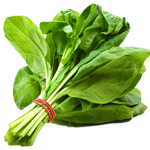 Spinach, Spinach Uses, Spinach for Health
