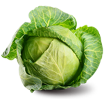Health Tips Cabbage, Cabbage, Cabbage Protein