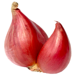 Onion, Onion Vitamins, Onion Nutrient, Onion Properties